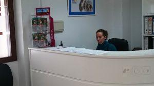 clinica veterinaria pequesalud fuente de cantos (16)
